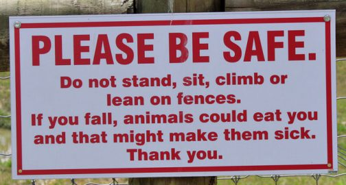 funny zoo signs which probably have some incredible stories behind